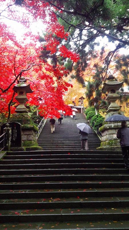 http://www.nimurasekizai.com/blog/DSC_0425.jpg