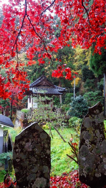 http://www.nimurasekizai.com/blog/DSC_0429.jpg