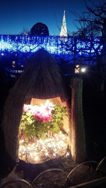 http://www.nimurasekizai.com/blog/DSC_0759.jpg