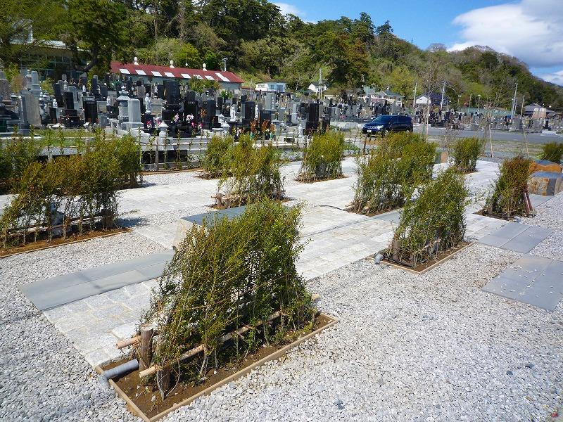 http://www.nimurasekizai.com/blog/P1020448.jpg